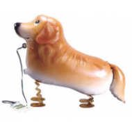 "Golden Retriever hund walking folie ballon 29"" (u/helium)"
