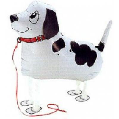 "Pointer hund walking folie ballon 22"" (u/helium)"