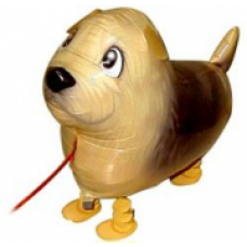 "Terrier hund walking folie ballon 19"" (u/helium)"