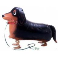 "Gravhund walking folie ballon 27"" (u/helium)"