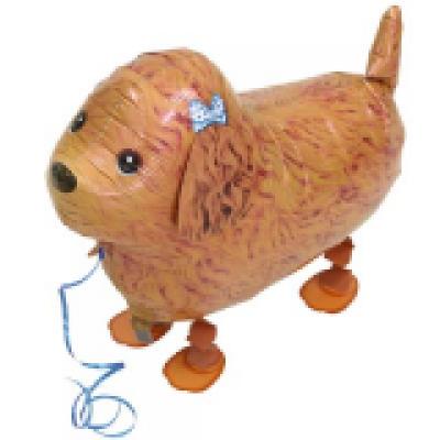 "Puddel hund walking folie ballon 29"" (u/helium)"